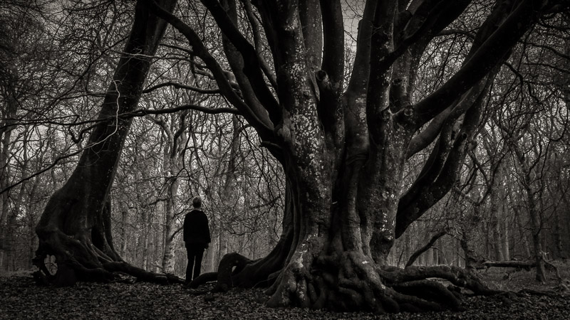 Untitled film still © George Logan / Chris Partridge