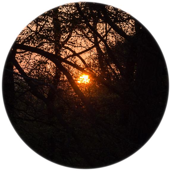 sunset© George Logan