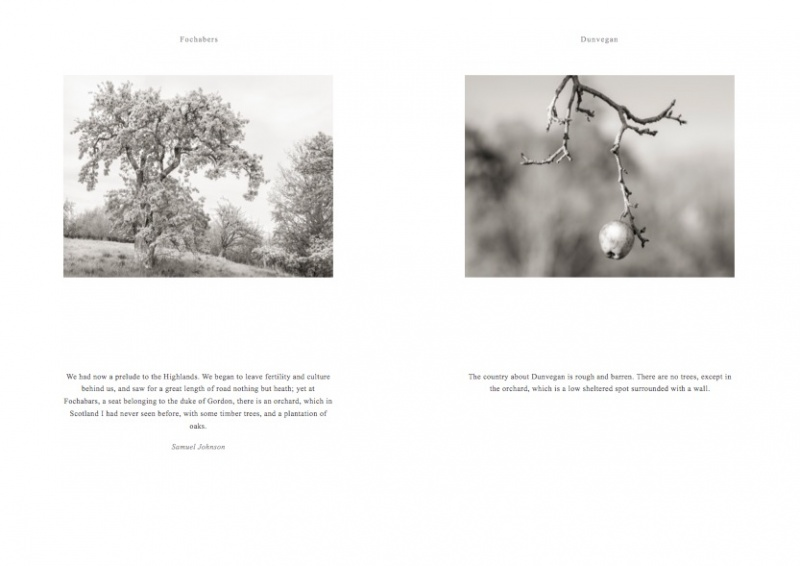 screengrab orchard book © George Logan